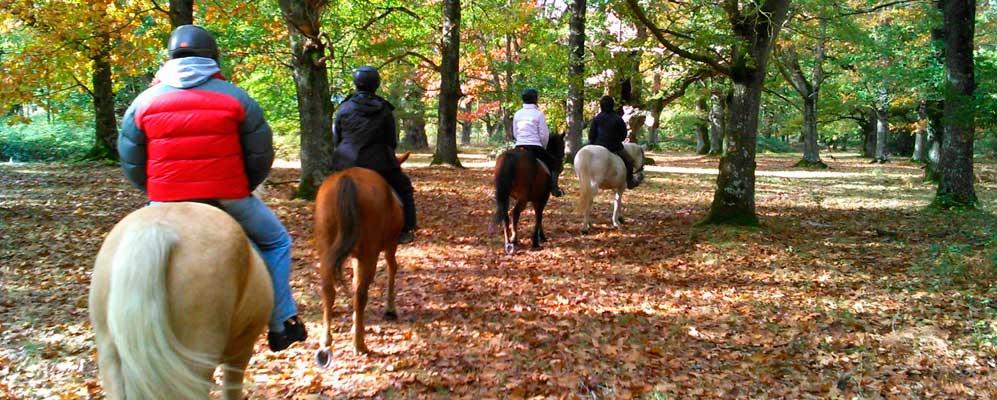 paseo-caballos-zaldiak-errotain-urdiain-sakana-navarra-nafarroa-